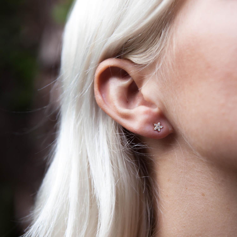 Alcyone Diamond Stud 9k Rose Gold / White Diamond - Image