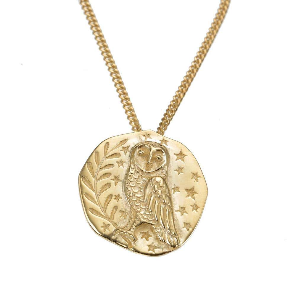 Owl Coin Long Necklace - Image